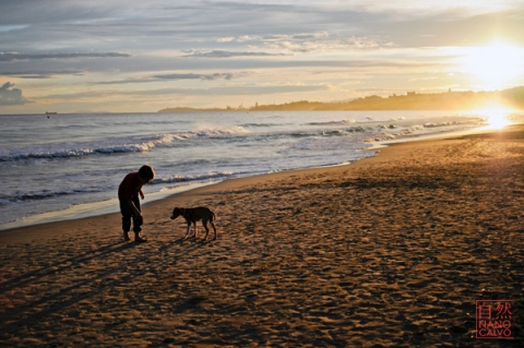Young boy playing with a puppy on the beach, at sunset