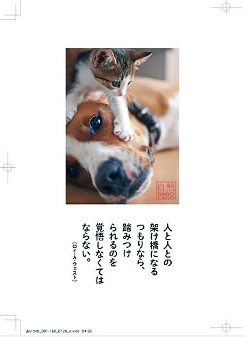 NanoCalvoJapanBook